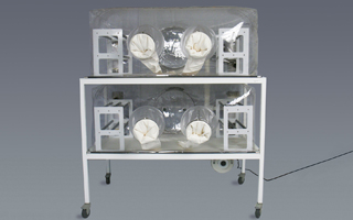 Class Biologically Clean double-tier, flexible film isolator system optimizes lab space.